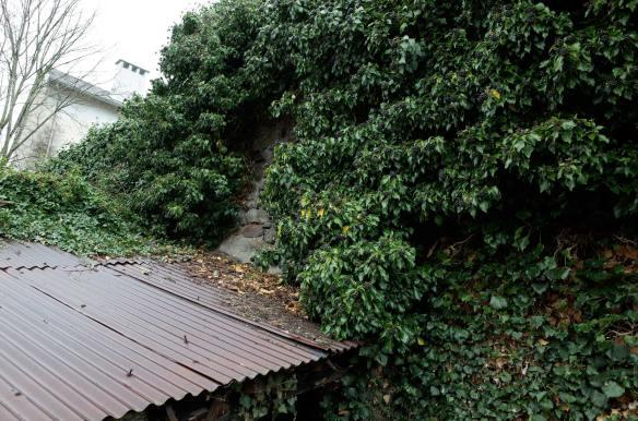JardinAurillacLierreR0000177-web