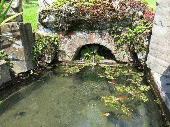 Bassin-IMG_7206-web
