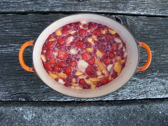 PeachStrawberry2-PICT0048-web