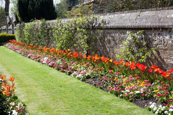 Southover_Grange_Gardens_MG_7020-2