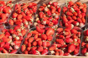 Strawberry_jam_MG_7430