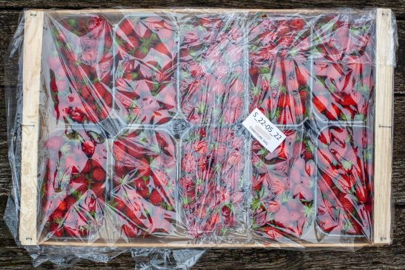 A wooden crate of safely-wrapped strawberries